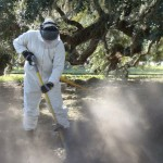 When conditions are dry, a large amount of dirt is blown into the air by the Air Spade.