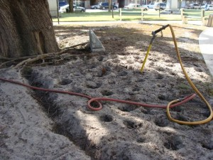 The Air Spade is used to make vertical holes about 18 to 24 inches deep. The idea is to loosen and aerate the soil allowing the roots covered by fill soil to grow upwards into the fill. The fill soil should also be removed from the base of the tree in what is called a root crown excavation.