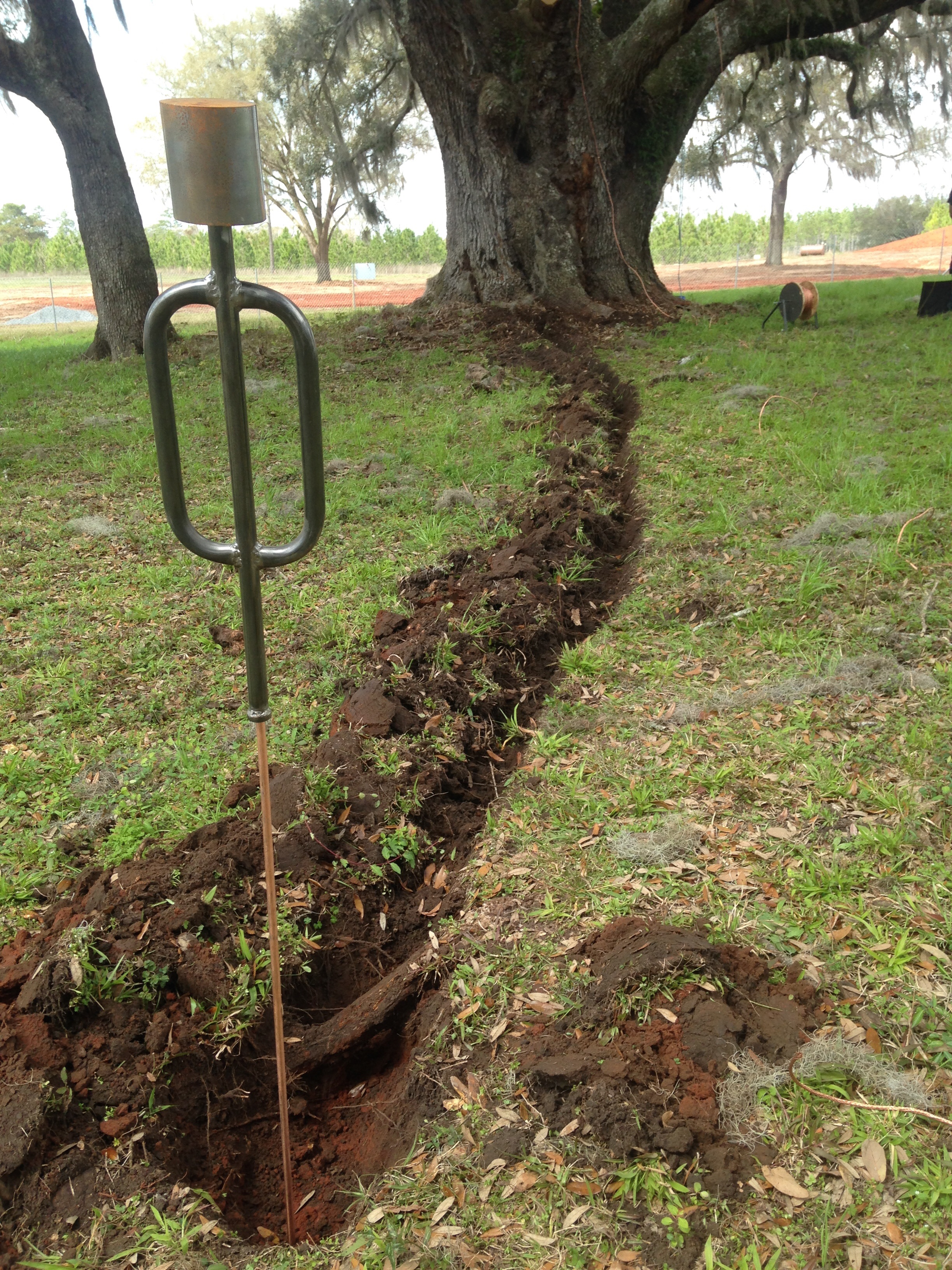 lightning protection for your special tree | Lippi