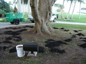 Composted organic matter is placed over the soil.